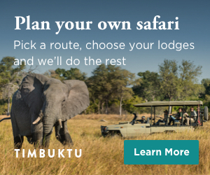 Plan an african safari with Timbuktu