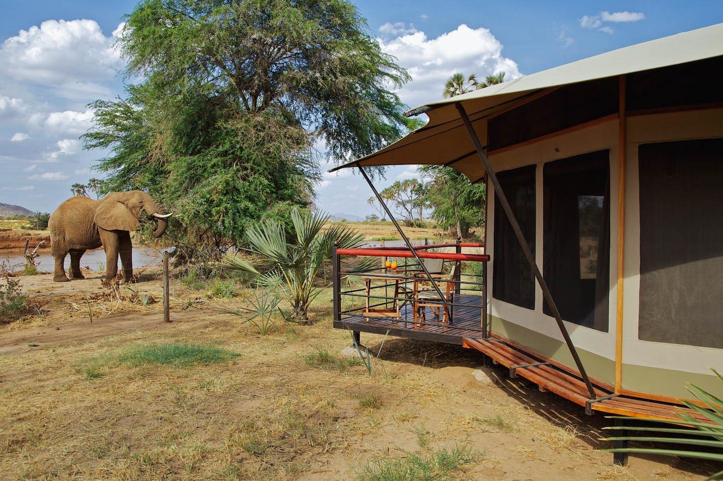 Ashnil Samburu Camp - Kichaka Tours and Travel Kenya