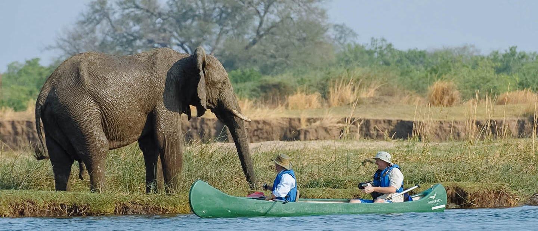 Mana canoe trail zimbabwe timbuktu travel for Pool designs under 50 000