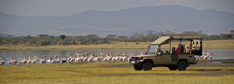 Mbweha Camp Kenya Timbuktu Travel